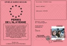 700-2447-Permis de l'Al.Hyenne